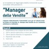 profesionisti-kerkon-te-punesoje-menaxher-shitjesh