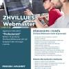 Agjencia e Punësimit ''Profesionisti'' pjesë e ''Çelësi Media Group '', vjen në tregun Shqiptar me qëllim revolucionarizimin e tregut të punësimit.  Kërkon të punësojë Zhvillues webmaster