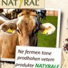 PUNONJESE PASTRIMI Fabrika e perpunimit te qumeshtit Natyral Kërkon të punësojë