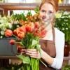 SHITESE Dyqan lulesh shume i njohur Kërkon të punësojë