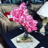 peme-dekorative