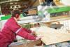 MARANGOZ Fabrike kolltuqesh Kërkon të punësojë
