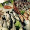 ndihmes-kuzhiniere-peshk-i-fresket-vlora-kerkon-te-punesoje