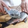 PASTRUES PESHKU FISH GRILL Kërkon të punësojë