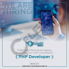 php-developer-profesionisti-recruitment-agency-on-behalf-of-our-international-client-a-digital-agency-in-the-field-of-content-management-software-development-digital-production-digital-pr